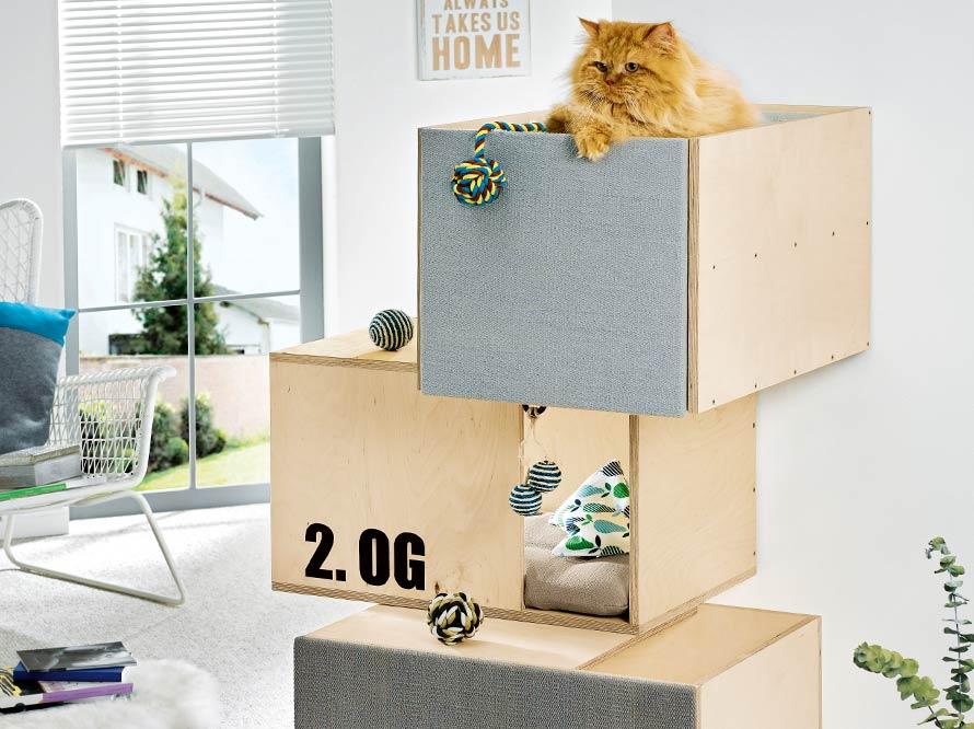 toom kreativwerkstatt katzenm bel kubus h hle. Black Bedroom Furniture Sets. Home Design Ideas