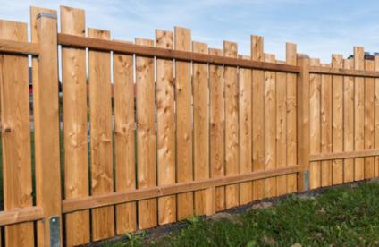 Sichtschutz Fur Den Garten Ideen Und Tipps Toom Baumarkt