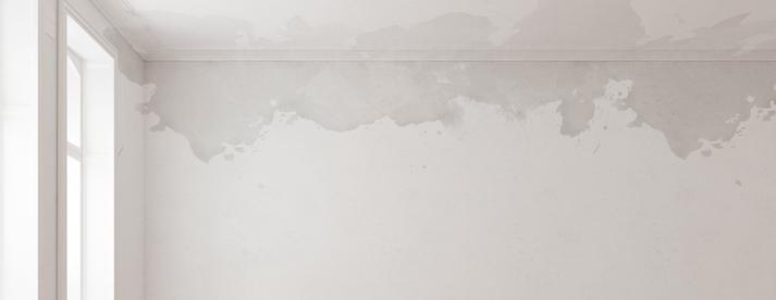Favorit Wasserflecken ǀ toom Baumarkt VP63