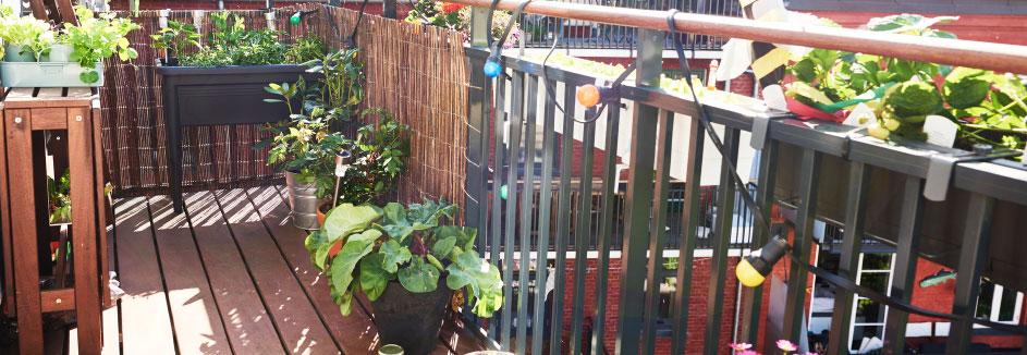 Hervorragend Balkon & Terrasse ǀ toom Baumarkt OC11