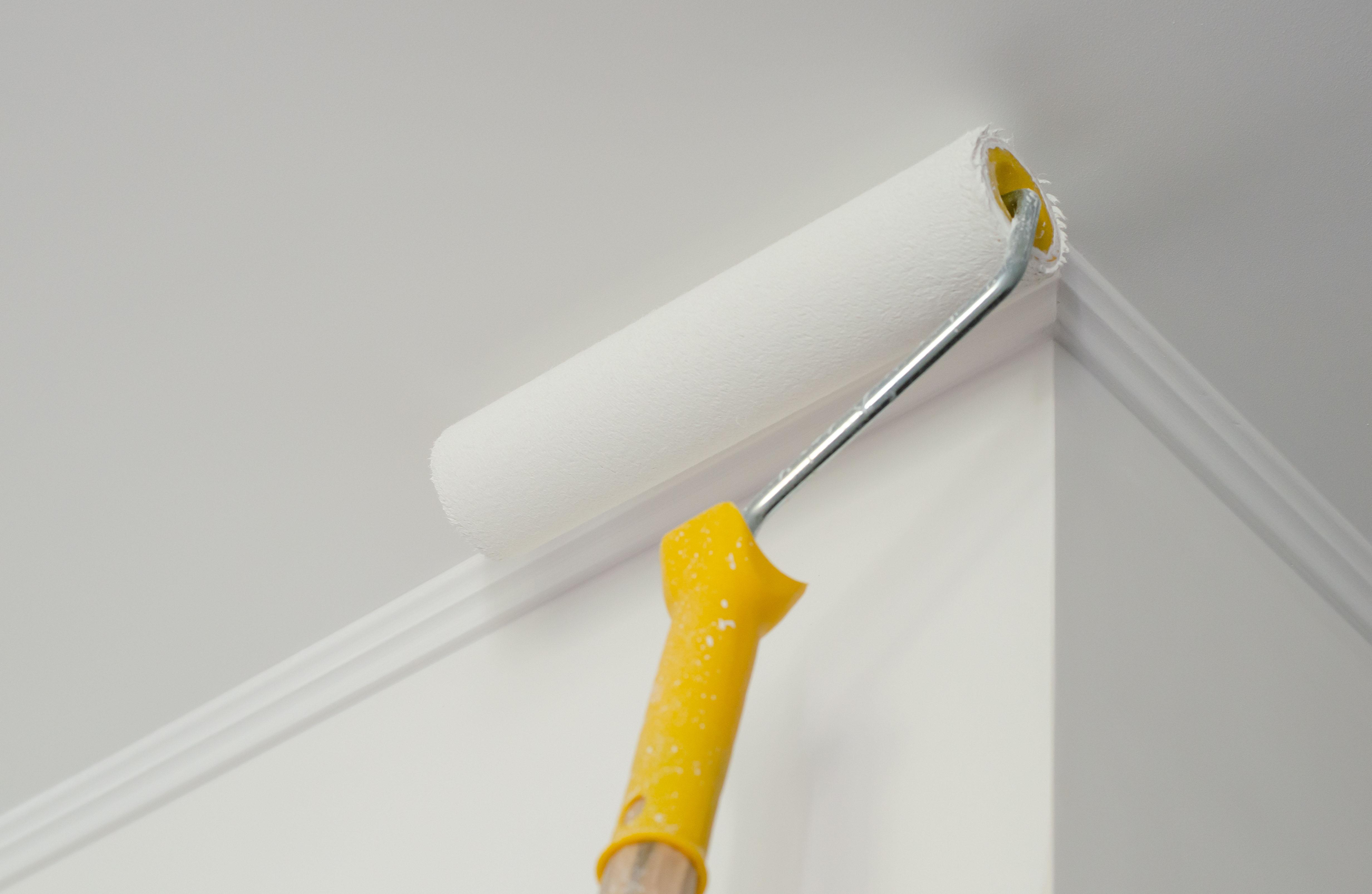 Wand & Decke Ratgeber zur Gestaltung   toom Baumarkt