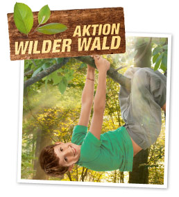 Aktion Wilder Wald