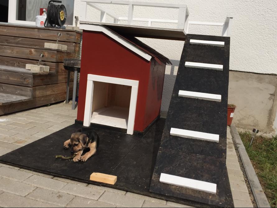 toom kreativwerkstatt hundeh tte mit terrasse. Black Bedroom Furniture Sets. Home Design Ideas